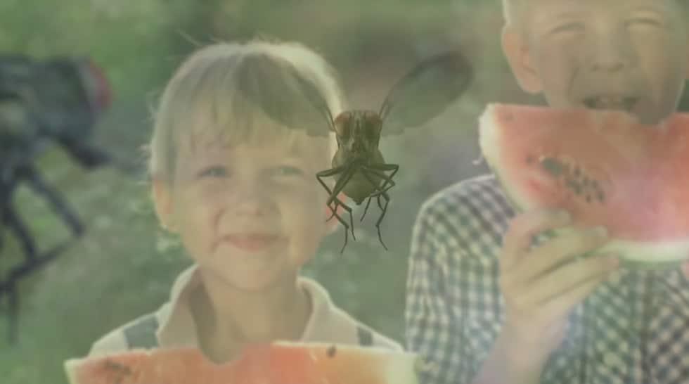 סרט מוצר – מפלצת הזבובים