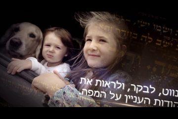 """הפקת טריילר לחויית ארץ התנ""""ך"""